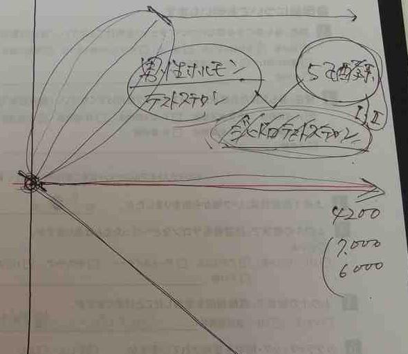 agaカウンセリングで説明されたグラフ