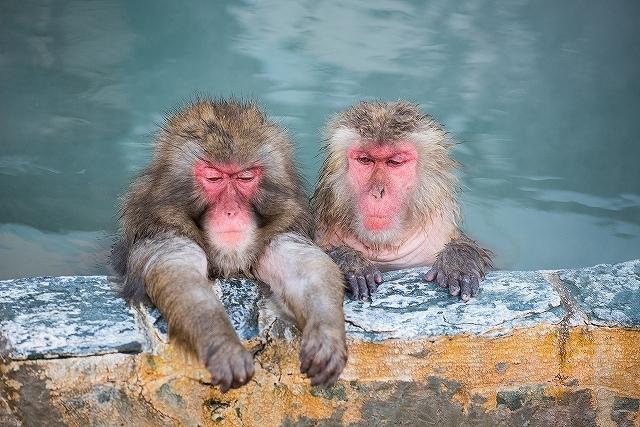 温泉に薄毛ハゲ専用シャンプー持っていく?