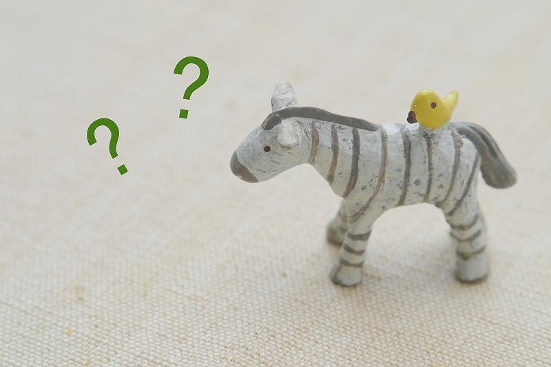 AGAの新しい治療薬:ザガーロって何?