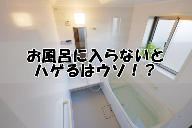 お風呂に入らないとハゲるはウソ!?